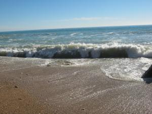 High Sea 1
