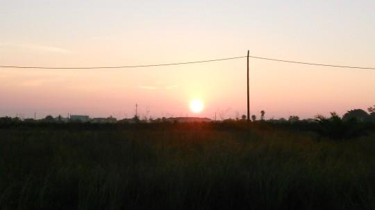 Fotos fra SD kort 141115 1623