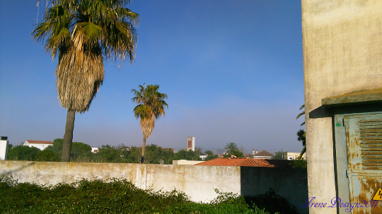 Sandstorm 2