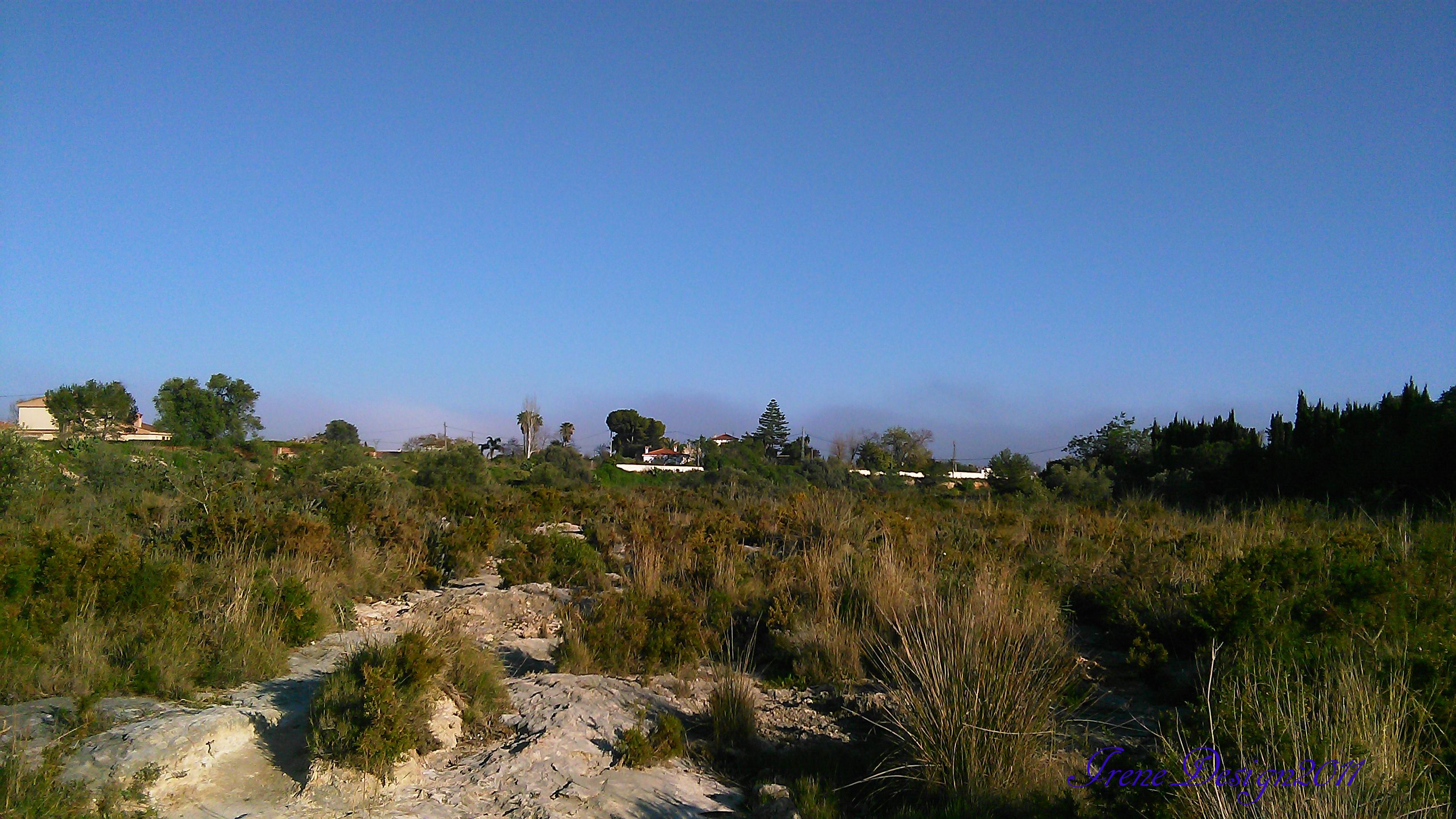 Sandstorm 5